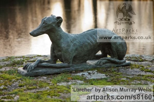 Bronze or Resin Garden Or Yard / Outside and Outdoor sculpture by sculptor Alison Murray Wells titled: 'Lurcher (life size Resting Poised garden Outdoor sculpture)'
