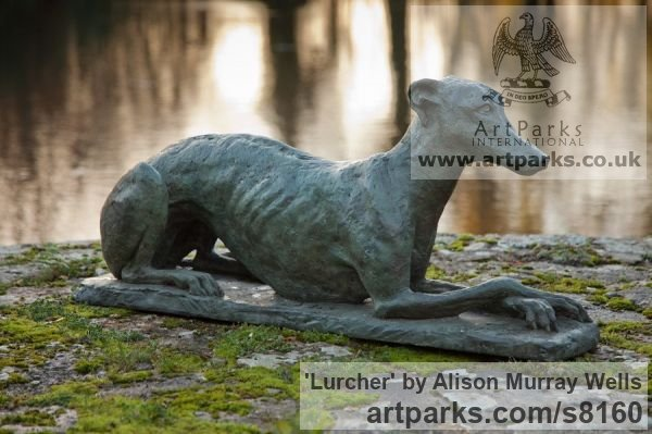 Bronze or Resin Garden Or Yard / Outside and Outdoor sculpture by sculptor Alison Murray Wells titled: 'Lurcher (life size Resting Poised garden Outdoor sculpture)' - Artwork View 2