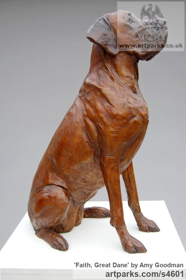 Bronze Dogs sculpture by sculptor Amy Goodman titled: 'Faith, Great Dane (Bronze Dog Life Portrait statue)'