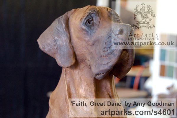 Bronze Dogs sculpture by sculptor Amy Goodman titled: 'Faith, Great Dane (Bronze Dog Life Portrait statue)' - Artwork View 2