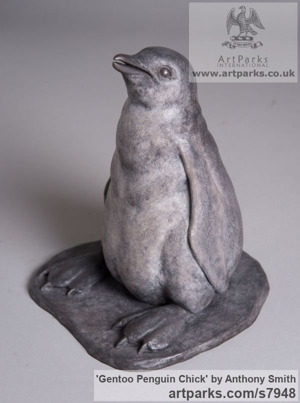 Bronze Penguins Puffins Auks sculpture by sculptor Anthony Smith titled: 'Gentoo Penguin Chick (life size sculpturettes)'