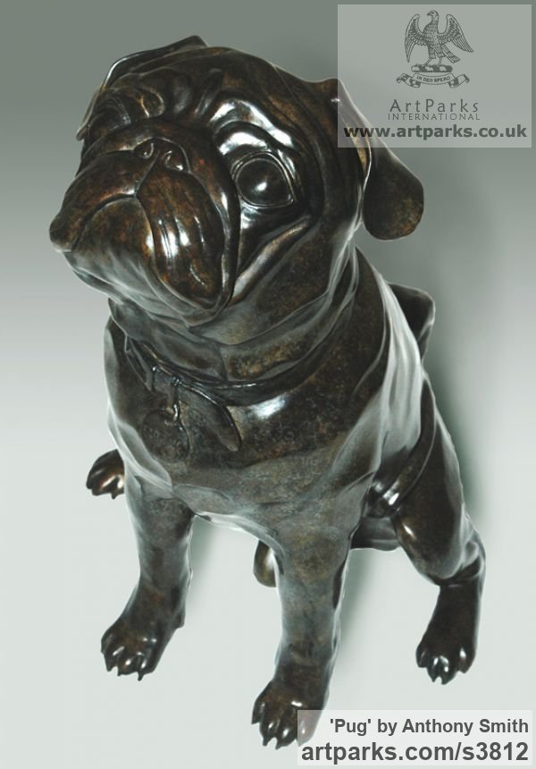 Bronze Dogs sculpture by sculptor Anthony Smith titled: 'Pug (commission Bronze Portrait sculpture)'