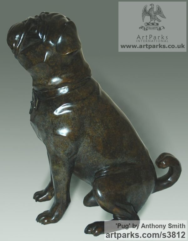 Bronze Dogs sculpture by sculptor Anthony Smith titled: 'Pug (commission Bronze Portrait sculpture)' - Artwork View 2