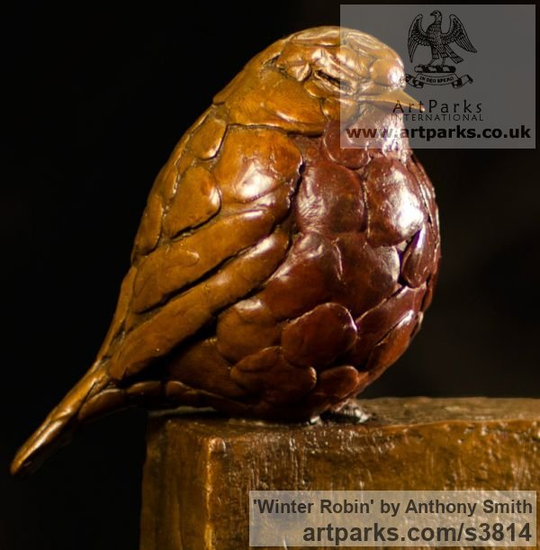 Bronze Varietal Mix of Bird Sculptures or sculpture by sculptor Anthony Smith titled: 'Winter Robin (Bronze life size fluffed up Robin Bird sculpture)' - Artwork View 2