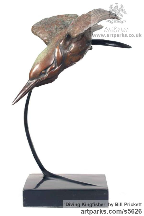 Bronze Birds in Flight, Birds Flying Sculptures or sculpture by sculptor Bill Prickett titled: 'Diving Kingfisher (Flying Bronze life size sculptures)' - Artwork View 3