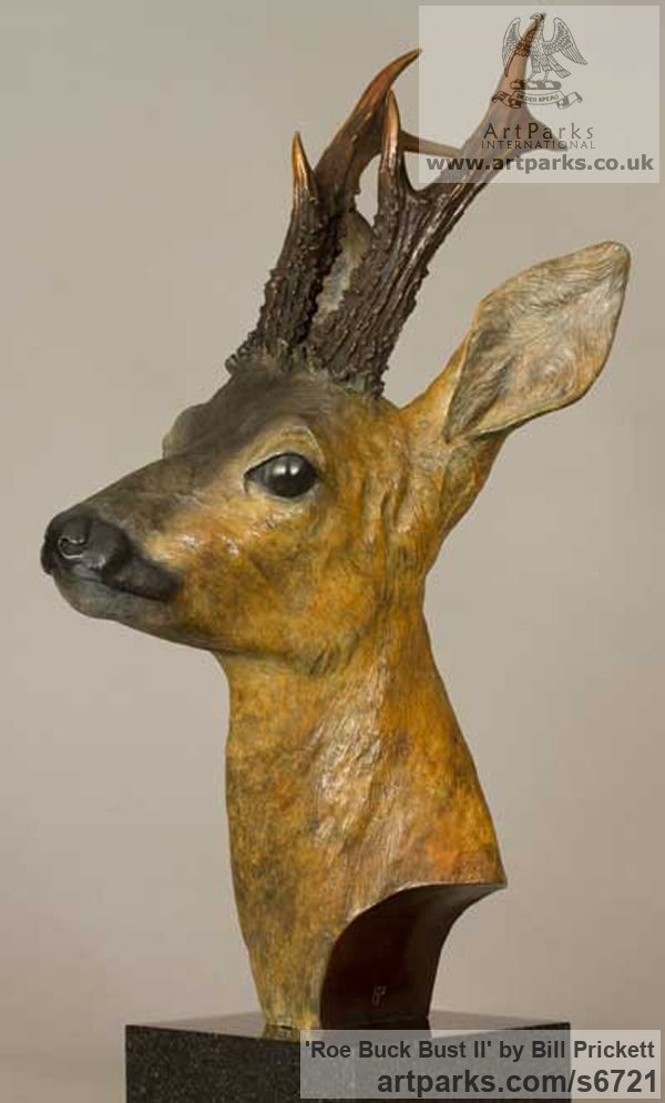 Bronze Deer sculpture by sculptor Bill Prickett titled: 'Roe Buck bust (Bronze life size Deer statue/sculpture)'