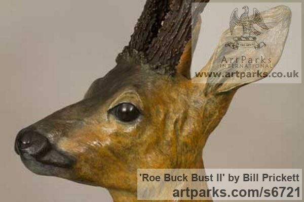 Bronze Deer sculpture by sculptor Bill Prickett titled: 'Roe Buck bust (Bronze life size Deer statue/sculpture)' - Artwork View 2