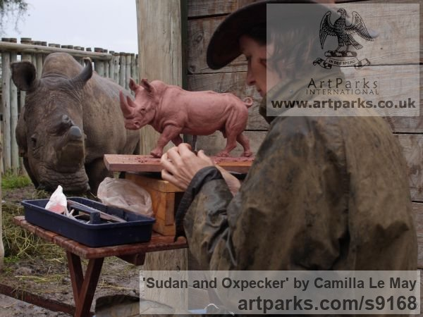 Bronze Wild Animals and Wild Life sculpture by sculptor Camilla Le May titled: 'Sudan, the last male northern white rhino with an oxpecker' - Artwork View 5