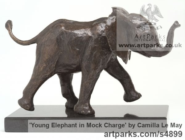 Bronze resin, cold cast bronze Wild Animals and Wild Life sculpture by sculptor Camilla Le May titled: 'Young Elly in mock charge (Baby Elephant sculptures/statuette/statue)'