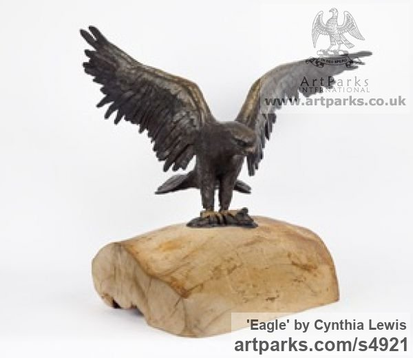 Bronze on Wood base Varietal Mix of Bird Sculptures or sculpture by sculptor Cynthia Lewis titled: 'Eagle (Landing bronze small Raptors or Birds of Prey statuettes)'