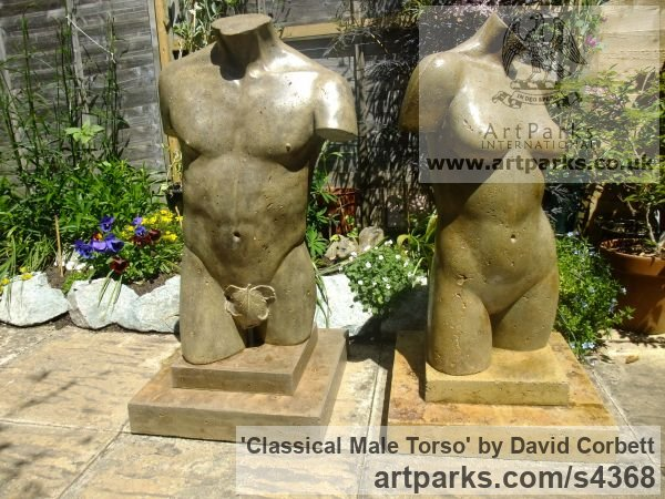 Stained and Polished Concrete Garden Or Yard / Outside and Outdoor sculpture by sculptor David Corbett titled: 'Classical Male Torso (life size Man`s Chest garden sculpture)' - Artwork View 5