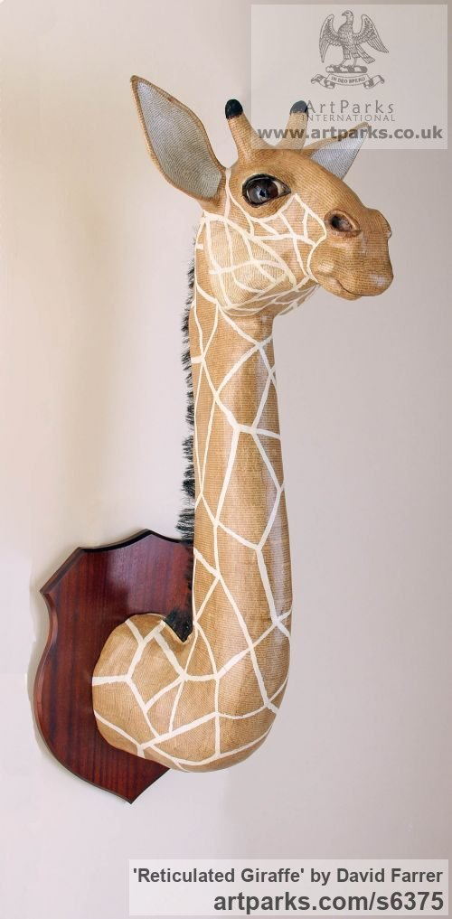 Papier Mache Wall Mounted or Wall Hanging sculpture by sculptor David Farrer titled: 'Reticulated Giraffe (Amusing Wall Mounted Bust statue)'