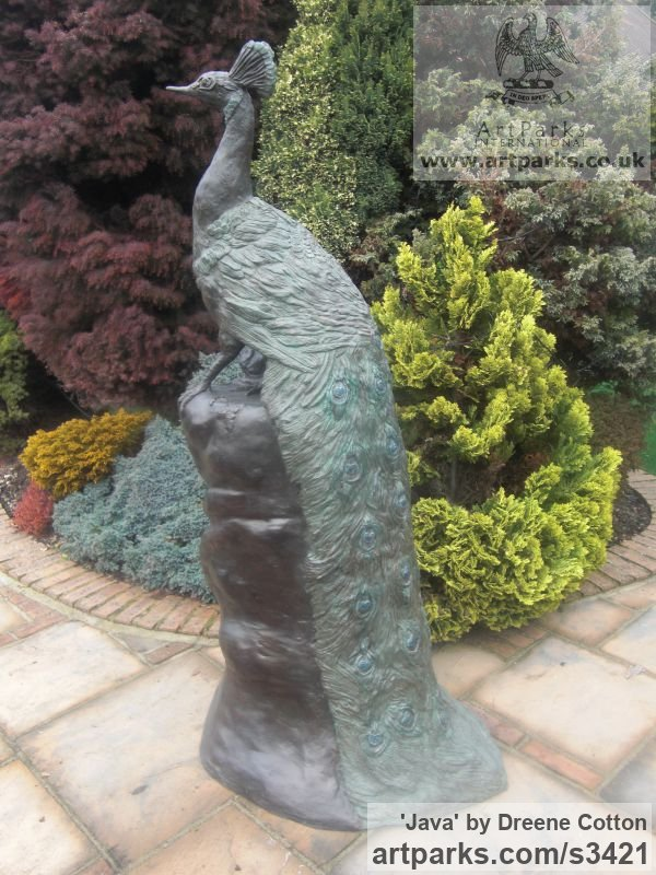 Bronze Resin Garden Or Yard / Outside and Outdoor sculpture by sculptor Dreene Cotton titled: 'Java (Bronze resin Proud Peacock Perched garden/Yard sculpture/statue)' - Artwork View 2