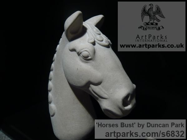 Portland stone Horse Sculpture / Equines Race Horses Pack HorseCart Horses Plough Horsess sculpture by sculptor Duncan Park titled: 'Horses Bust (Carved stone Classical style Head sculpture statue)' - Artwork View 2