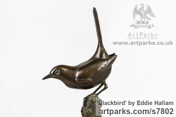 Bronze Varietal Mix of Bird Sculptures or sculpture by sculptor Eddie Hallam titled: 'Blackbird (Bronze Perched Standing garden Bird statuette)' - Artwork View 3