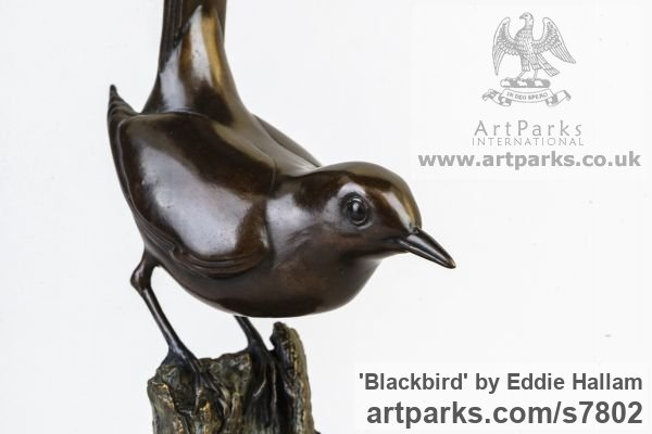 Bronze Varietal Mix of Bird Sculptures or sculpture by sculptor Eddie Hallam titled: 'Blackbird (Bronze Perched Standing garden Bird statuette)' - Artwork View 4