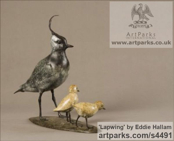Bronze Varietal Mix of Bird Sculptures or sculpture by sculptor Eddie Hallam titled: 'Lapwing (Bronze standing and Chicks/Family statuettes/statue/figurine)' - Artwork View 2