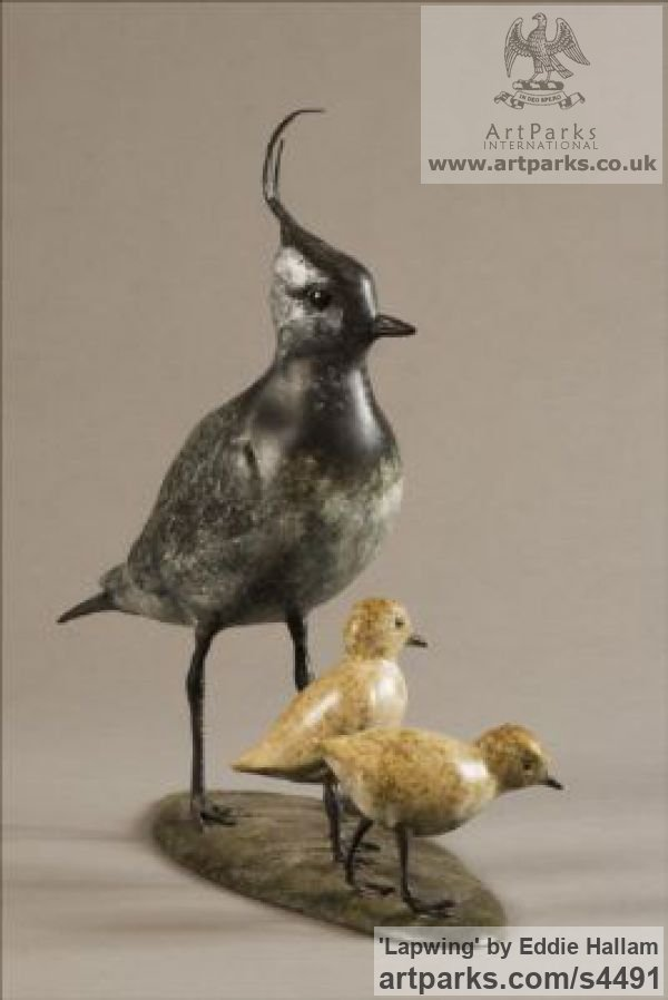 Bronze Varietal Mix of Bird Sculptures or sculpture by sculptor Eddie Hallam titled: 'Lapwing (Bronze standing and Chicks/Family statuettes/statue/figurine)' - Artwork View 3
