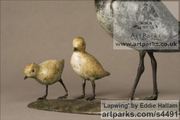 Bronze Varietal Mix of Bird Sculptures or sculpture by sculptor Eddie Hallam titled: 'Lapwing (Bronze standing and Chicks/Family statuettes/statue/figurine)' - Artwork View 4