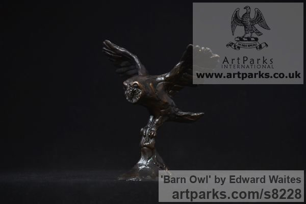 Bronze Varietal Mix of Bird Sculptures or sculpture by sculptor Edward Waites titled: 'Barn Owl (Small Barn Owl Flying on the Wing sculpture)' - Artwork View 2