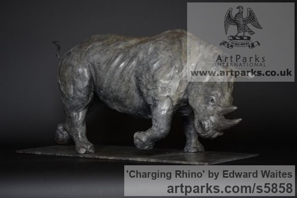 Bronze Wild Animals and Wild Life sculpture by sculptor Edward Waites titled: 'Charging Rhino (Small bronze African Animal Indoor Inside sculpture)'