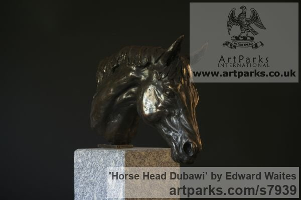 Bronze Horse Sculpture / Equines Race Horses Pack HorseCart Horses Plough Horsess sculpture by sculptor Edward Waites titled: 'Horse Head (Dubawi) (Small Bust Indoor sculpture)'