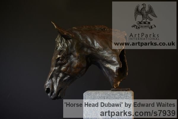 Bronze Horse Sculpture / Equines Race Horses Pack HorseCart Horses Plough Horsess sculpture by sculptor Edward Waites titled: 'Horse Head (Dubawi) (Small Bust Indoor sculpture)' - Artwork View 2