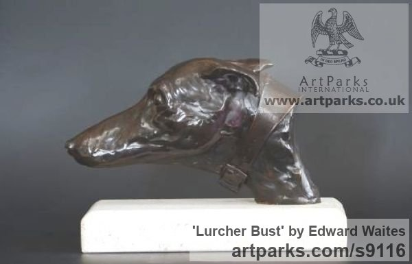 Bronze Dogs sculpture by sculptor Edward Waites titled: 'Lurcher Bust (Hunting Hound`s Head sculpture)'