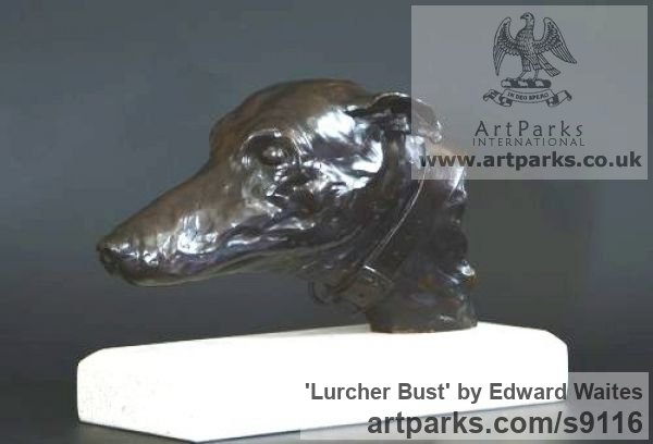Bronze Dogs sculpture by sculptor Edward Waites titled: 'Lurcher Bust (Hunting Hound`s Head sculpture)' - Artwork View 2