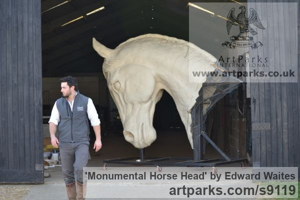 Clay to be cast in bronze Horse Sculpture / Equines Race Horses Pack HorseCart Horses Plough Horsess sculpture by sculptor Edward Waites titled: 'Monumental Horse Head'