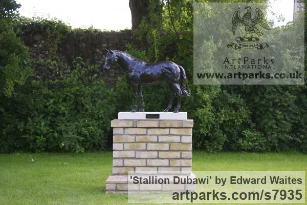 Bronze Garden Or Yard / Outside and Outdoor sculpture by sculptor Edward Waites titled: 'Stallion (Dubawi)' - Artwork View 1