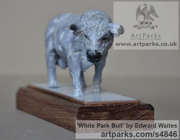 Bronze & Oak Farm Yard sculpture by sculptor Edward Waites titled: 'White Park Bull (Small Bronze Standing sculpturette ornnament)'