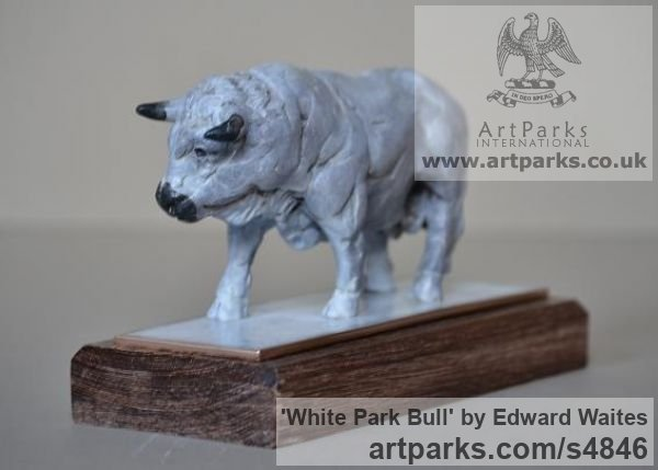 Bronze & Oak Farm Yard sculpture by sculptor Edward Waites titled: 'White Park Bull (Small Bronze Standing sculpturette ornnament)' - Artwork View 2