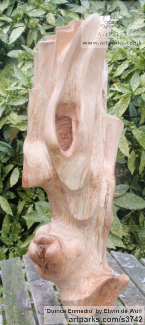 Apple Wood Garden Or Yard / Outside and Outdoor sculpture by sculptor Elwin de Wolf titled: 'Quince Enmedio (Carved Wood abstract sculpture)' - Artwork View 1