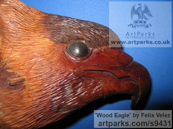 Wood Carved or Carving sculpture by sculptor Felix Velez titled: 'Wood Eagle (Wood Carving Driftwood Eagle Head statue)' - Artwork View 4