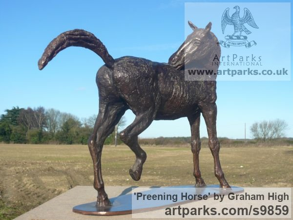Foundry bronze Horse Sculpture / Equines Race Horses Pack HorseCart Horses Plough Horsess sculpture by sculptor Graham High titled: 'Preening Horse (Small Bronze Scratching Horse statue)' - Artwork View 4