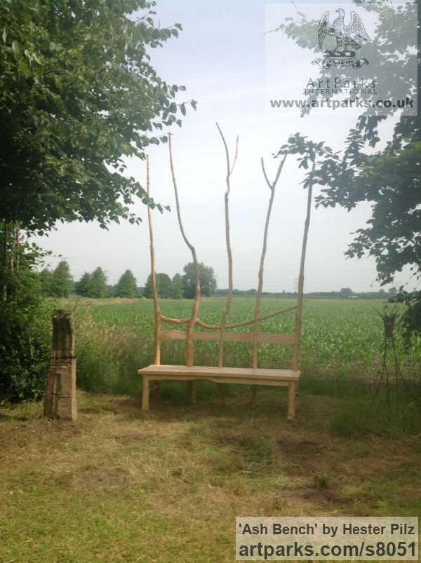 Ash wood Garden Or Yard / Outside and Outdoor sculpture by sculptor Hester Pilz titled: 'Ash Bench'