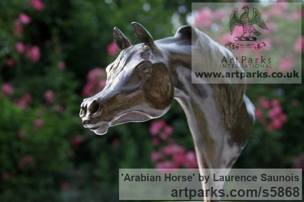 Bronze Horse Sculpture / Equines Race Horses Pack HorseCart Horses Plough Horsess sculpture by sculptor Laurence Saunois titled: 'Arabian Horse (Small Bronze Horse Head Bust commission sculptures)' - Artwork View 2