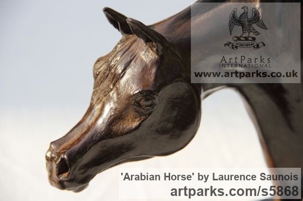 Bronze Horse Sculpture / Equines Race Horses Pack HorseCart Horses Plough Horsess sculpture by sculptor Laurence Saunois titled: 'Arabian Horse (Small Bronze Horse Head Bust commission sculptures)' - Artwork View 3