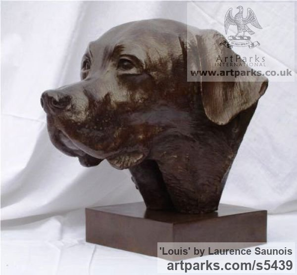 Bronze Dogs sculpture by sculptor Laurence Saunois titled: 'Louis, (Labrador Retriever Portrait statues/sculpture Bronze commission)'