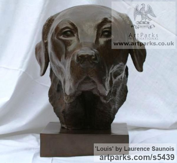 Bronze Dogs sculpture by sculptor Laurence Saunois titled: 'Louis, (Labrador Retriever Portrait statues/sculpture Bronze commission)' - Artwork View 2