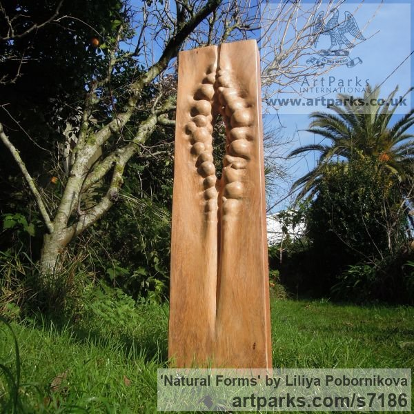 Wood sculpture Carved Abstract Contemporary Modern sculpture carving sculpture by sculptor Liliya Pobornikova titled: 'Natural Forms (Tall Carved Small garden statue)' - Artwork View 1