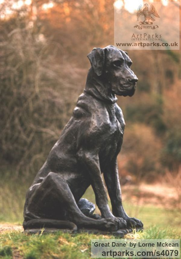 Bronze Garden Or Yard / Outside and Outdoor sculpture by sculptor Lorne Mckean titled: 'Great Dane (life size bronze Dog Sitting Outdoor sculpture)'