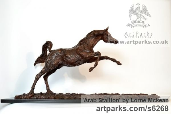 Foundry Bronze Horse Sculpture / Equines Race Horses Pack HorseCart Horses Plough Horsess sculpture by sculptor Lorne Mckean titled: 'Arab Stallion (Om El Bahreyn Small Prancing Bronze statuette/sculpture)'