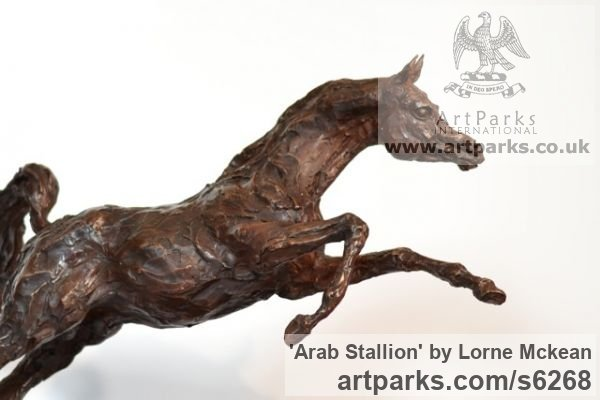 Foundry Bronze Horse Sculpture / Equines Race Horses Pack HorseCart Horses Plough Horsess sculpture by sculptor Lorne Mckean titled: 'Arab Stallion (Om El Bahreyn Small Prancing Bronze statuette/sculpture)' - Artwork View 2