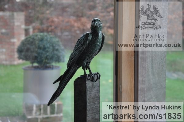 Bronze Varietal Mix of Bird Sculptures or sculpture by sculptor Lynda Hukins titled: 'Kestrel (Contemporary Raptor Hawk Bird of Prey garden sculpture)' - Artwork View 3