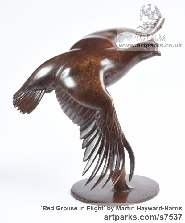 Bronze Varietal Mix of Bird Sculptures or sculpture by sculptor Martin Hayward-Harris titled: 'Red Grouse in Flight (Bronze Flying Game Bird Indoor statuette)'