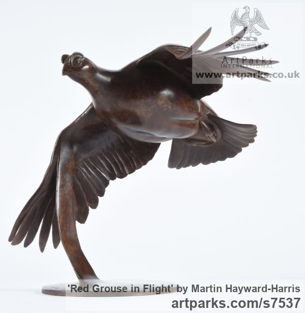 Bronze Varietal Mix of Bird Sculptures or sculpture by sculptor Martin Hayward-Harris titled: 'Red Grouse in Flight (Bronze Flying Game Bird Indoor statuette)' - Artwork View 4