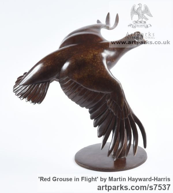 Bronze Varietal Mix of Bird Sculptures or sculpture by sculptor Martin Hayward-Harris titled: 'Red Grouse in Flight (Bronze Flying Game Bird Indoor statuette)' - Artwork View 5