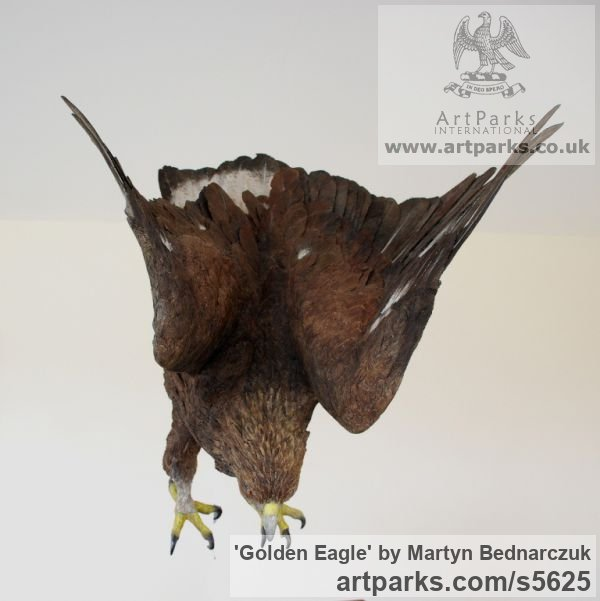 Carved Wood Varietal Mix of Bird Sculptures or sculpture by sculptor Martyn Bednarczuk titled: 'Golden Eagle (Carved Wood Lifesize Painted accurate Carving/statues)' - Artwork View 3